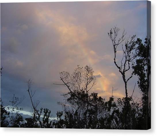 Birth Of A Rainbow Canvas Print by Frank Wickham