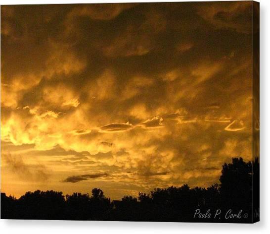 Bittersweet Sky Canvas Print by Paula Cork