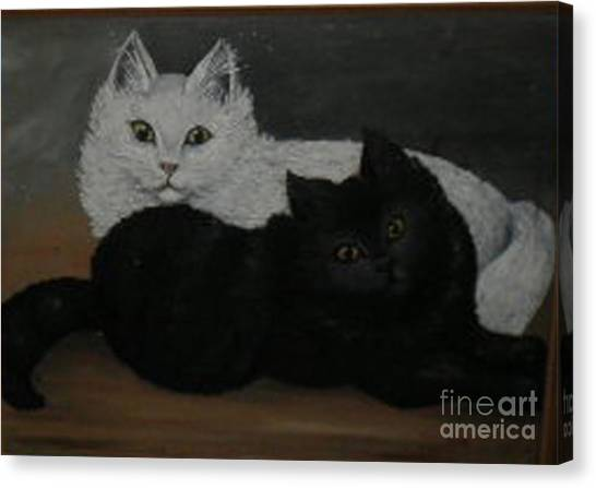 Black And White Cats Canvas Print by Hilda Schreiber