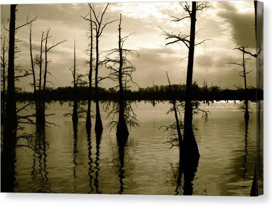 Black Bayou 8 Canvas Print