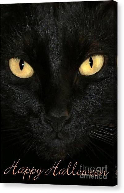 Black Cat Halloween Card Canvas Print