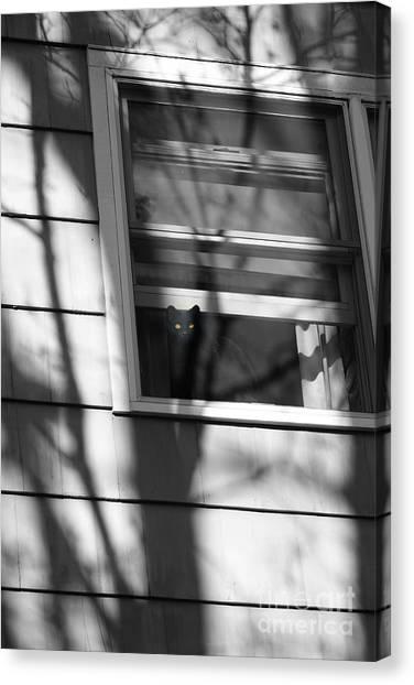 Black  Cat On A Shadowy Sill Canvas Print