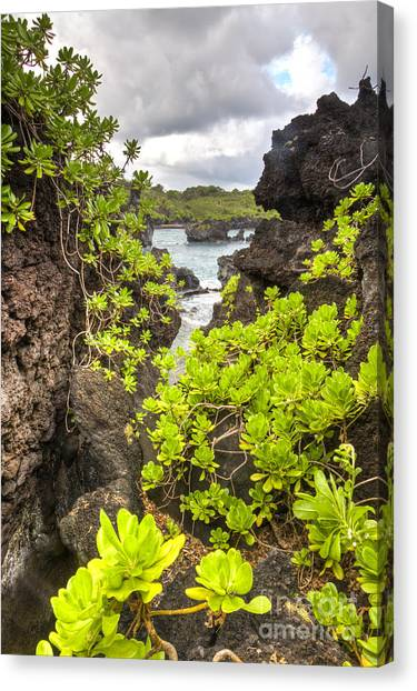 Black Sand Canvas Print - Black Sands Beach Hana Maui Hawaii 2 by Dustin K Ryan