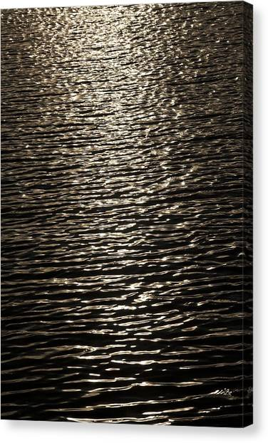 Black Water Canvas Print by Miguel Capelo