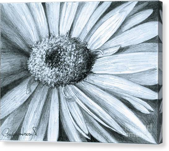 Black White Gerber Canvas Print