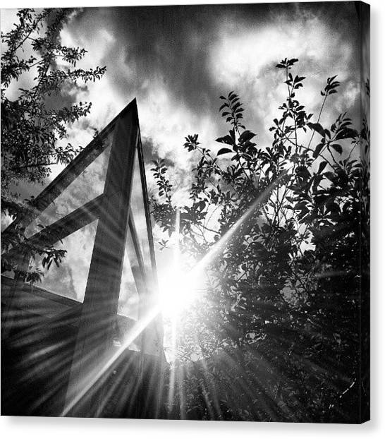 Back Canvas Print - #black #white #sun #hometown by Ole Back