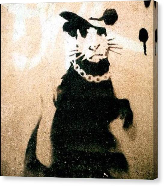 Graffiti Canvas Print - Bling Bling #banksy #rat #rodent by A Rey