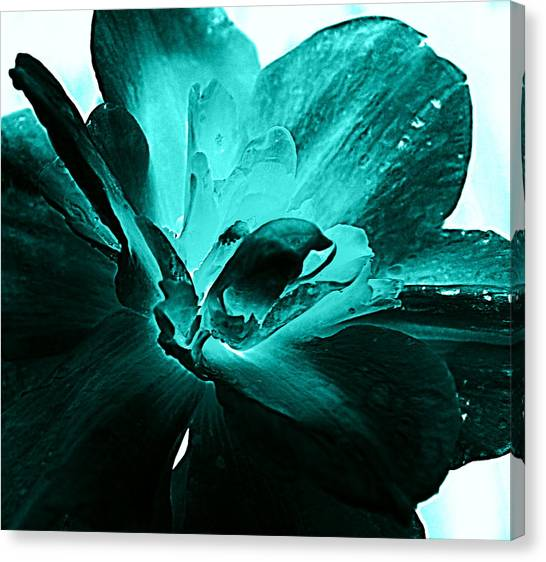 Blooming Blue Canvas Print