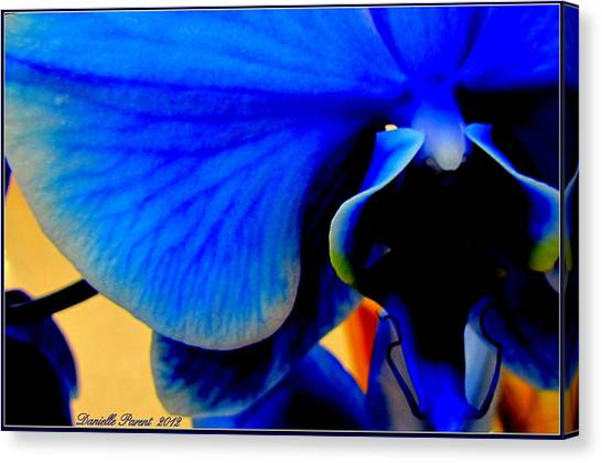 Blue Diamonds Orchids Canvas Print