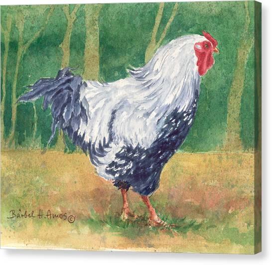 Blue Hen  Canvas Print