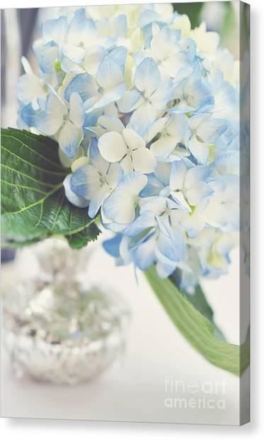 Blue Hydrangea Canvas Print by Tamara Adams