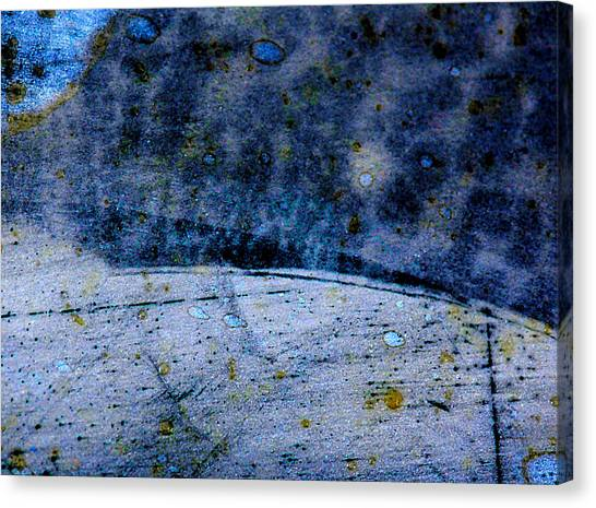 Canvas Print - Blue Moon by Fine Art  Photography
