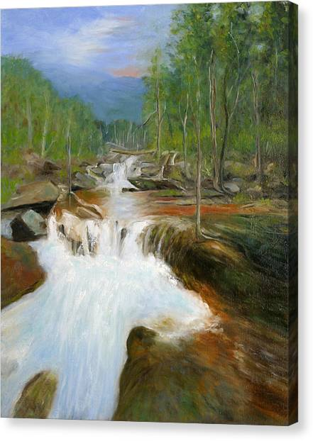 Blue Ridge Runoff Canvas Print by Max Mckenzie