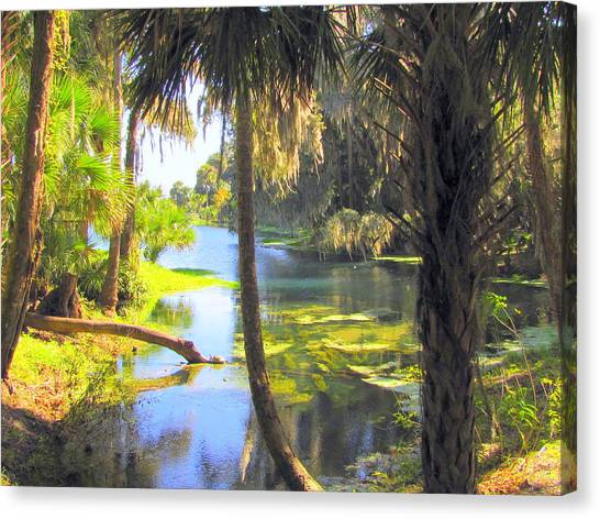 Blue Springs Canvas Print