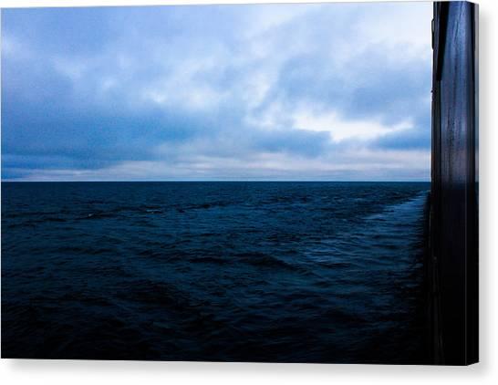Blue Canvas Print by Tim  Telep