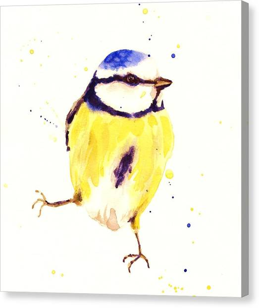 Blue Tit Canvas Print - Blue Tit Painting by Alison Fennell
