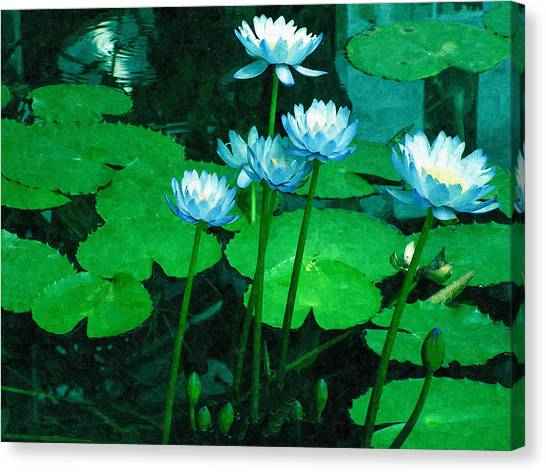 Blue Water Lily Canvas Print by Design Windmill