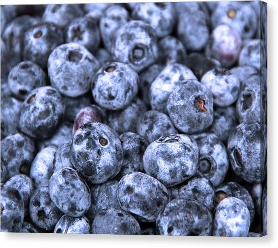 Blueberries  Canvas Print by Kim French