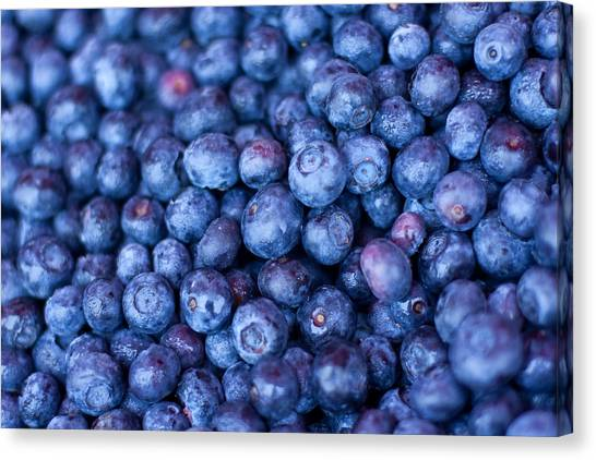 Fruit Canvas Print - Blueberries by Tanya Harrison