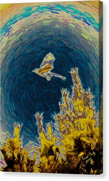 Bluejay Gone Wild Canvas Print