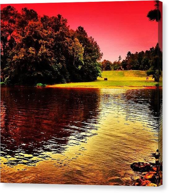 Ponds Canvas Print - Bond Park by Katie Williams