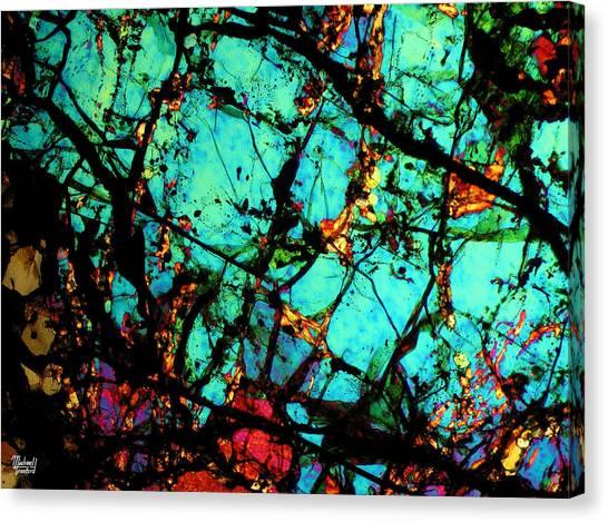 Bondac Meteorite Nwa 657 Canvas Print