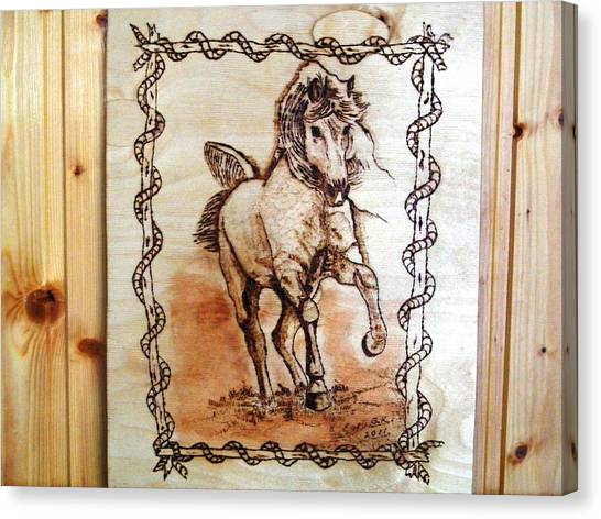 Born To Be Free-sylver  Horse Pyrography Canvas Print by Egri George-Christian