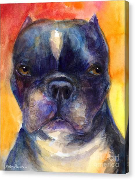 Watercolor Pet Portraits Canvas Print - Boston Terrier Dog Portrait Painting In Watercolor by Svetlana Novikova