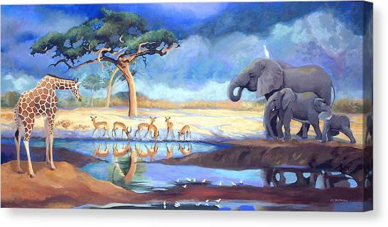 Botswana Watering Hole Canvas Print