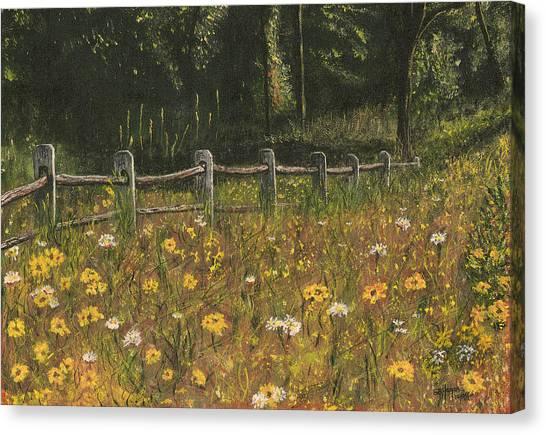 boundary fence Swan Lake NY Canvas Print