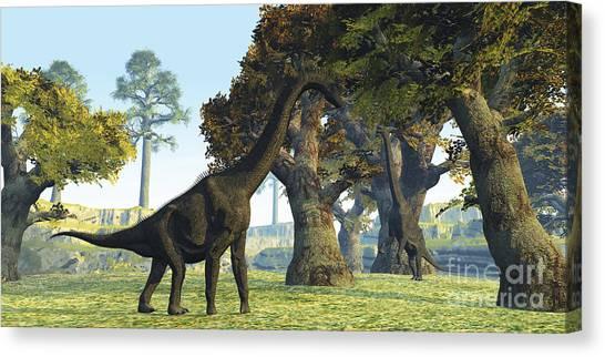 Brachiosaurus Canvas Print - Brachiosaurus Dinosaurs Walk Among by Corey Ford