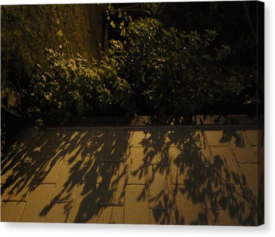 Branches Over The Wall Canvas Print by Guy Ricketts