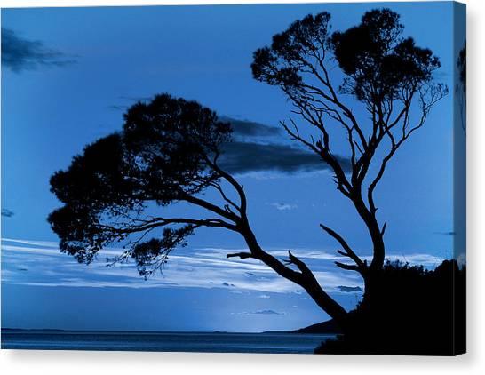 Brela Blue Version Canvas Print