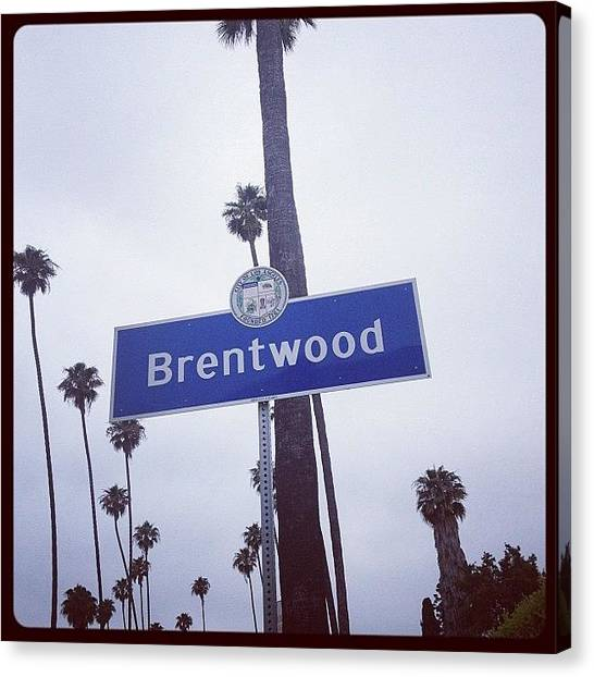 Palm Trees Canvas Print - Brentwood Sign by Lana Rushing