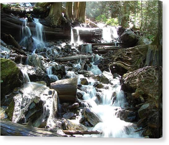 Bridal Veil Falls Creek Canvas Print