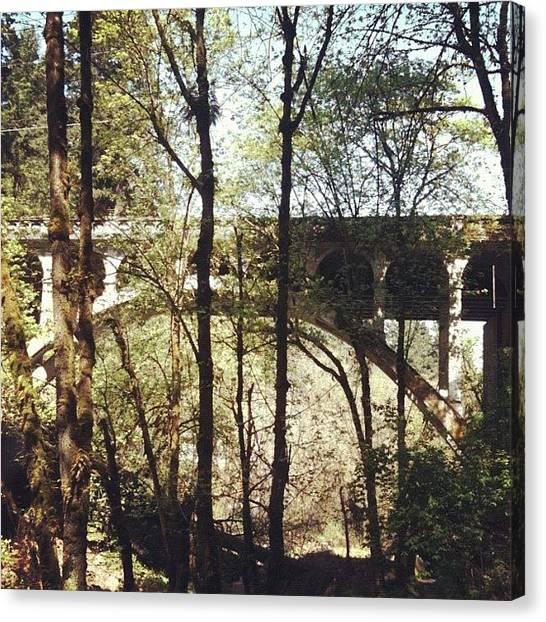 Apple Tree Canvas Print - Bridge Over Lake Oswego Creek by Anna Porter
