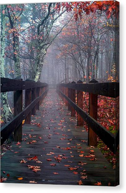 Bridge To Mist Woods Canvas Print