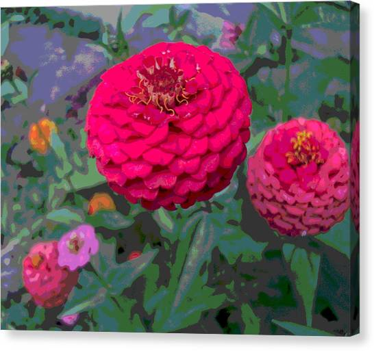 Bright Red Zinnia Flower Canvas Print by Padre Art