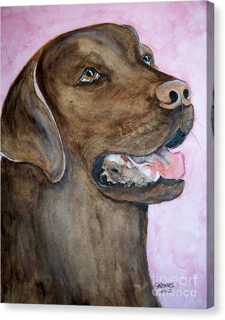 Waterdog Canvas Print - Brown Lab by Carol Grimes