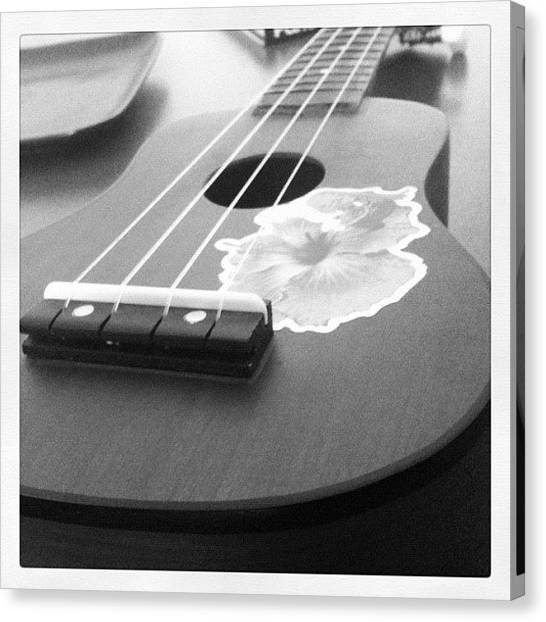 Ukuleles Canvas Print - Brushing Up On My Ukulele Skills by Guy Owens