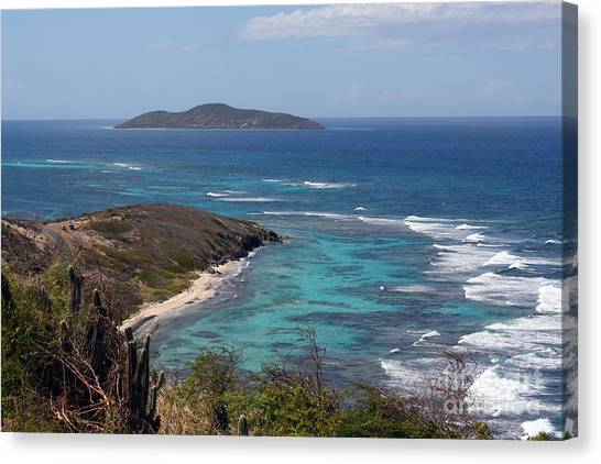 Buck Island Usvi Canvas Print
