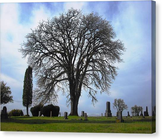 Buena Vista Cemetery Port Gamble Canvas Print