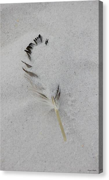 Buried Feather Canvas Print