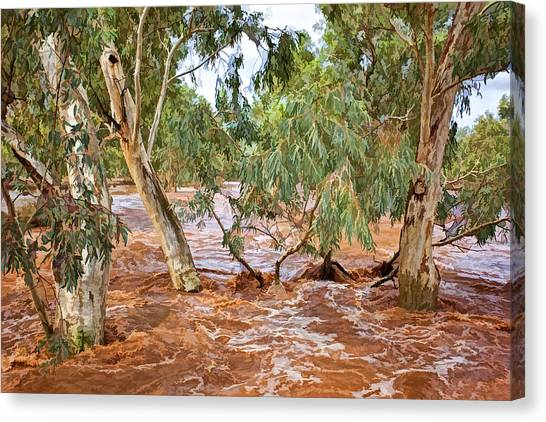 Bush Flood Canvas Print