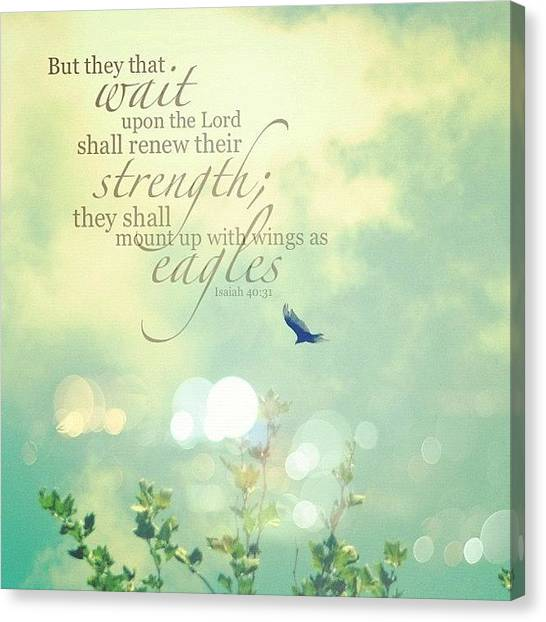 Flying Canvas Print - but They That Wait Upon The Lord by Traci Beeson