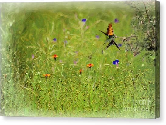 Butterflies Making Love In The Meadow Canvas Print