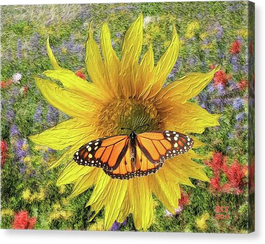 Butterfly And Sunflower Canvas Print