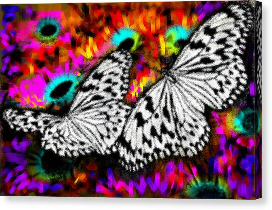 Butterfly Canvas Print by Ilias Athanasopoulos
