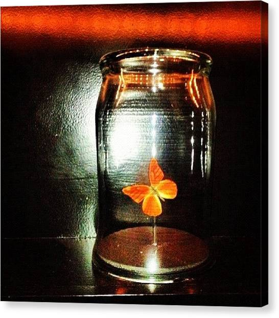 Seattle Canvas Print - Butterfly Jar by T Catonpremise