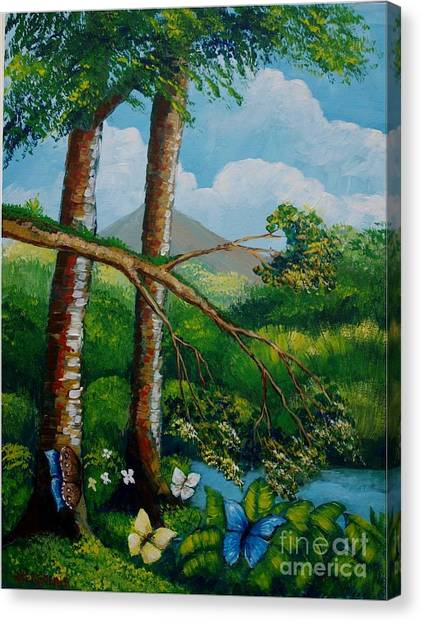 Butterflyes On The Wild Canvas Print